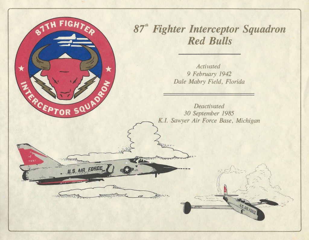 The 87th Fighter Interceptor Squadron Red Bulls 1942-1985 (Courtesy of John Roznick)